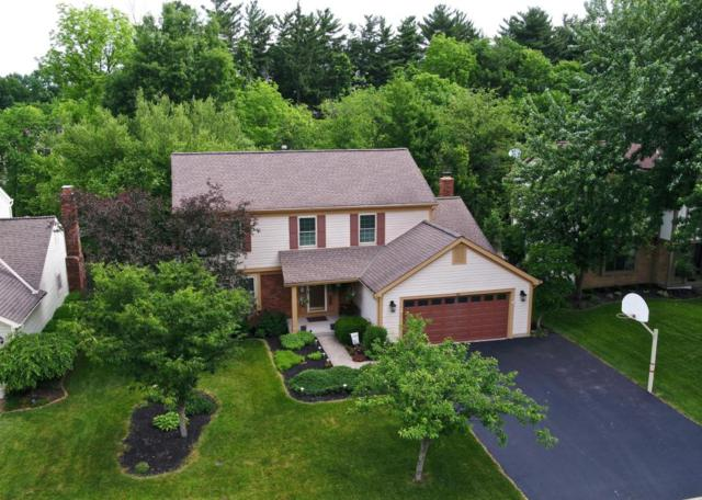 56 Ravine Road, Powell, OH 43065 (MLS #218022543) :: Signature Real Estate