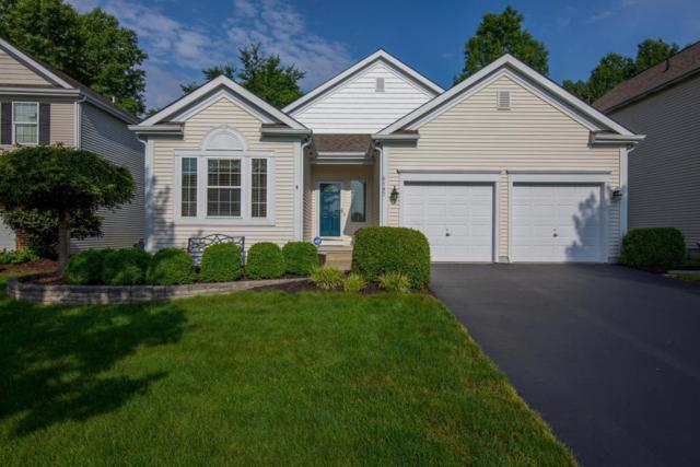 6197 Home Park Drive, New Albany, OH 43054 (MLS #218022545) :: Exp Realty
