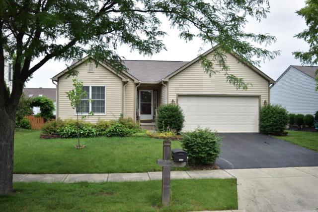 1164 Village Drive, Marysville, OH 43040 (MLS #218022584) :: Signature Real Estate