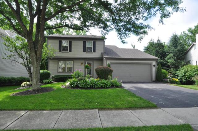 4417 Big Walnutview Drive, Columbus, OH 43230 (MLS #218022628) :: Exp Realty