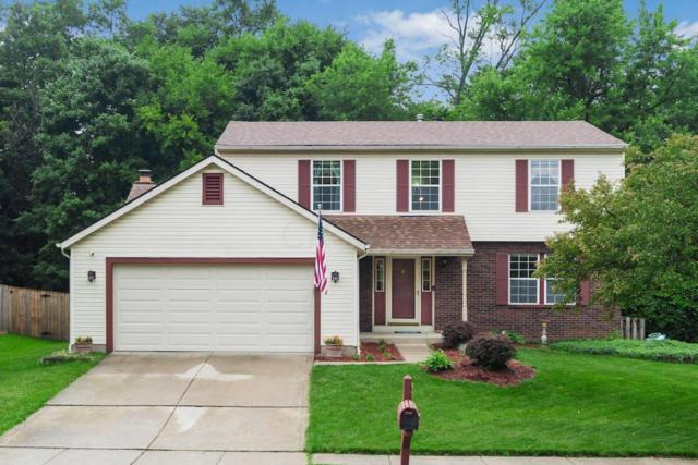 4306 Secludedwood Court, Columbus, OH 43230 (MLS #218022637) :: Exp Realty