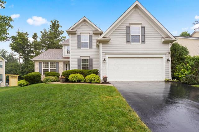 2785 Bold Venture Drive, Lewis Center, OH 43035 (MLS #218022671) :: Exp Realty