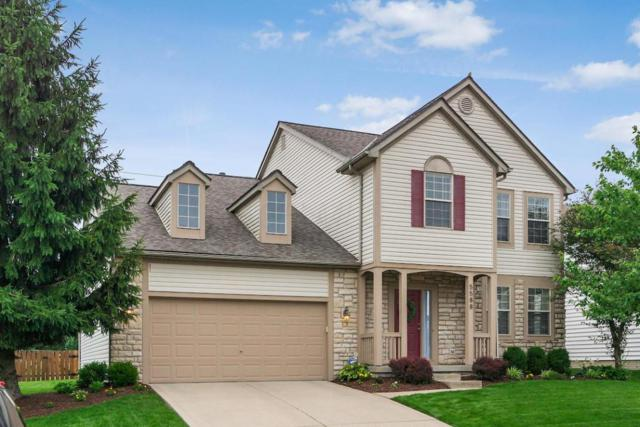 5588 Connorwill Drive, Westerville, OH 43081 (MLS #218022691) :: Exp Realty