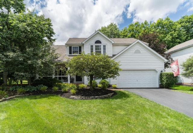 317 Chasely Circle, Powell, OH 43065 (MLS #218022767) :: Exp Realty