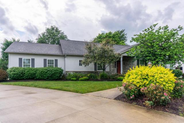 7010 Whitetail Lane, Westerville, OH 43082 (MLS #218022815) :: Exp Realty
