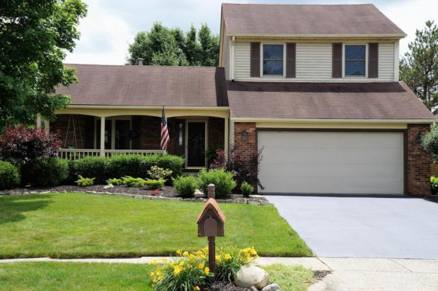 6515 Old Church Way, Reynoldsburg, OH 43068 (MLS #218022839) :: Keller Williams Classic Properties