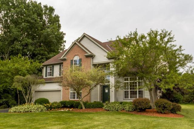 10576 Churchill Drive, Powell, OH 43065 (MLS #218022855) :: Exp Realty
