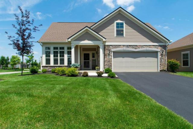 504 Morningstar Place, Powell, OH 43065 (MLS #218024001) :: CARLETON REALTY