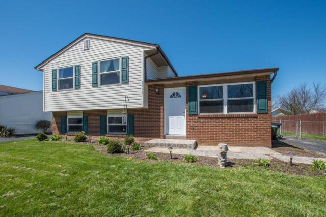 8456 Blue Lake Avenue, Galloway, OH 43119 (MLS #218024366) :: Exp Realty