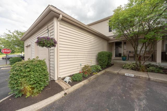 2503 Dahlia Way 65B, Columbus, OH 43235 (MLS #218024662) :: CARLETON REALTY