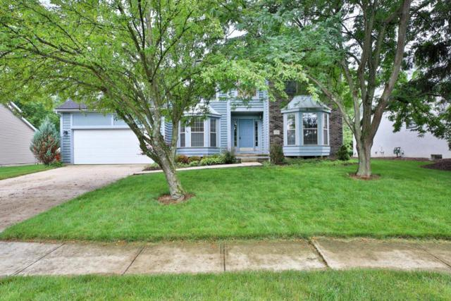 1179 Hickory Grove Court, Worthington, OH 43085 (MLS #218024744) :: Julie & Company