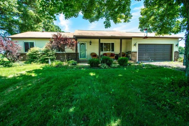 4490 Blue Church Road, Sunbury, OH 43074 (MLS #218024783) :: Susanne Casey & Associates