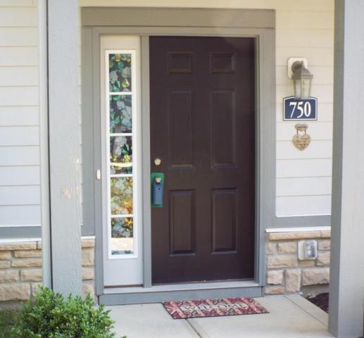 750 Redwood Lane, Lewis Center, OH 43035 (MLS #218025268) :: Susanne Casey & Associates