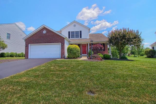 7543 Daisy Lane, Lewis Center, OH 43035 (MLS #218025556) :: Susanne Casey & Associates
