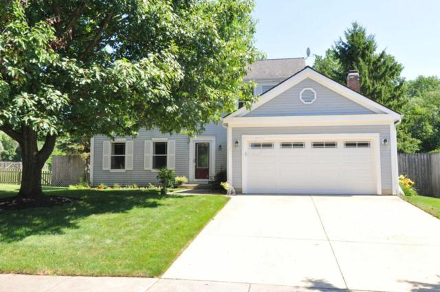 439 Highmeadows Village Drive, Powell, OH 43065 (MLS #218025707) :: RE/MAX ONE
