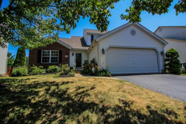 5438 Haussman Place, Westerville, OH 43081 (MLS #218025719) :: Keller Williams Excel