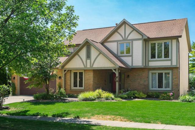 7205 Dominick Court, Dublin, OH 43017 (MLS #218025854) :: RE/MAX ONE