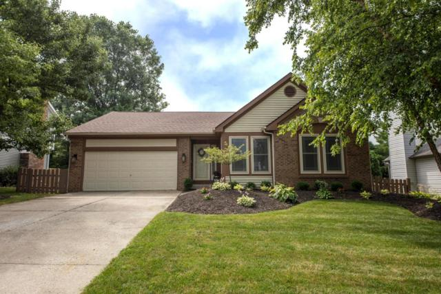 15 Highmeadows Circle, Powell, OH 43065 (MLS #218026099) :: The Raines Group