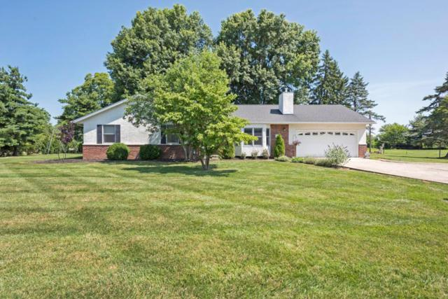 138 Lakeview Drive SW, Reynoldsburg, OH 43068 (MLS #218026119) :: RE/MAX ONE