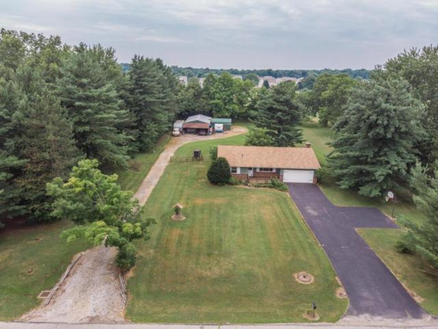 11071 Terry Lane, Pickerington, OH 43147 (MLS #218026145) :: RE/MAX ONE