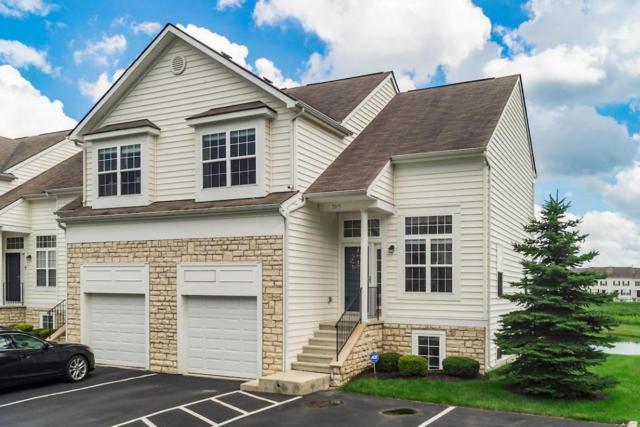 7015 Cavalcade Drive, New Albany, OH 43054 (MLS #218026237) :: Julie & Company