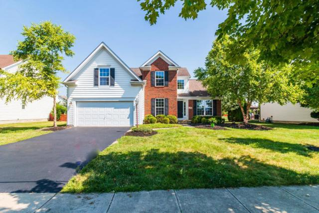 7734 Glenmore Drive, Powell, OH 43065 (MLS #218026262) :: The Raines Group