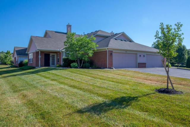 5366 Tawny Lane, Westerville, OH 43081 (MLS #218026576) :: e-Merge Real Estate