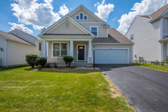1151 Willow Oak Drive, Blacklick, OH 43004 (MLS #218026837) :: Berkshire Hathaway HomeServices Crager Tobin Real Estate