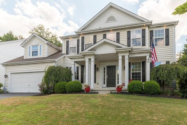 4377 Oaks Shadow Drive, New Albany, OH 43054 (MLS #218026961) :: The Columbus Home Team