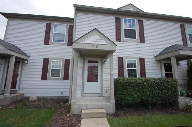 210 Malloy Lane, Blacklick, OH 43004 (MLS #218027393) :: The Columbus Home Team