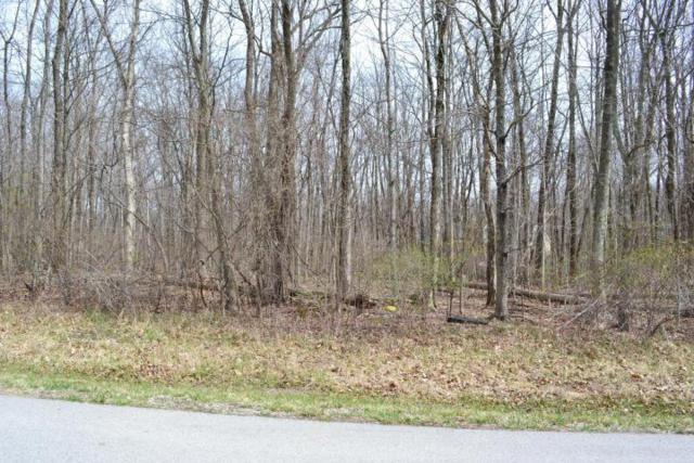 201 Stonesthrow Drive, Alexandria, OH 43001 (MLS #218027654) :: Signature Real Estate