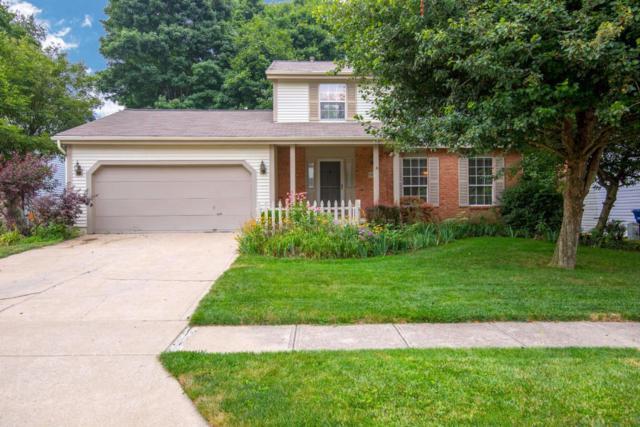 7808 Cedar Ridge Drive, Pickerington, OH 43147 (MLS #218027667) :: Shannon Grimm & Partners