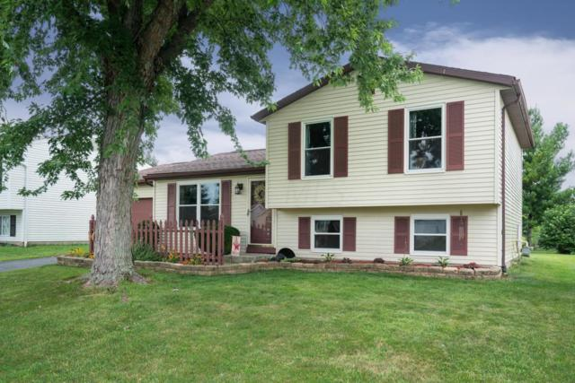 785 Cherry Bud Drive, Columbus, OH 43228 (MLS #218027701) :: Berkshire Hathaway HomeServices Crager Tobin Real Estate