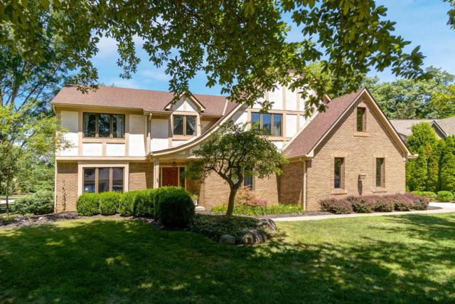 256 Autumn Leaf Court, Columbus, OH 43235 (MLS #218027811) :: Exp Realty