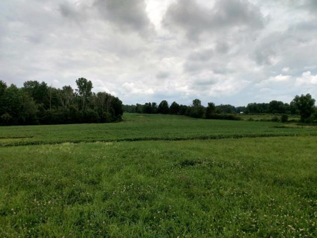 0 County Road 25, Cardington, OH 43315 (MLS #218027845) :: Berkshire Hathaway HomeServices Crager Tobin Real Estate