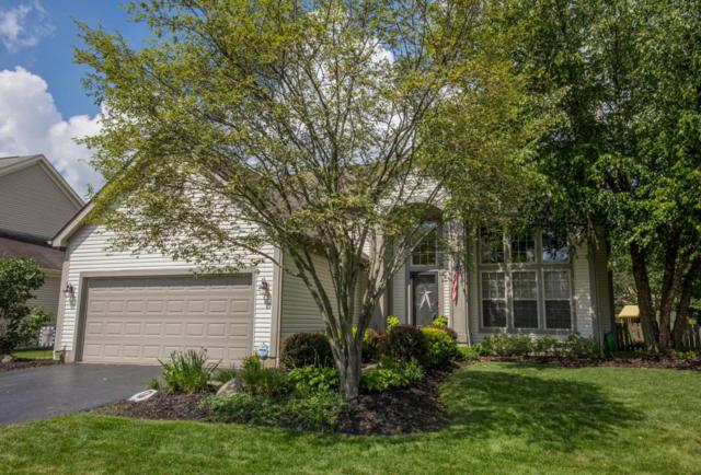 7796 Manorgate Street, Lewis Center, OH 43035 (MLS #218027926) :: Berkshire Hathaway HomeServices Crager Tobin Real Estate