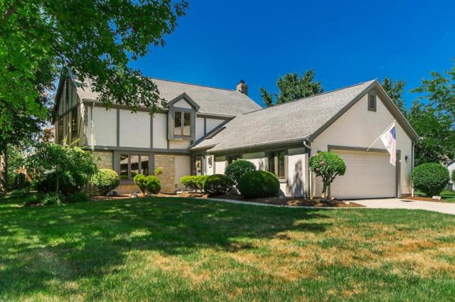 7234 Shady Nelms Drive, Dublin, OH 43017 (MLS #218027955) :: Berkshire Hathaway HomeServices Crager Tobin Real Estate