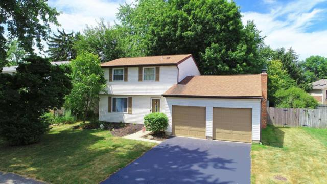 2951 Highpoint Drive, Columbus, OH 43221 (MLS #218028022) :: The Columbus Home Team