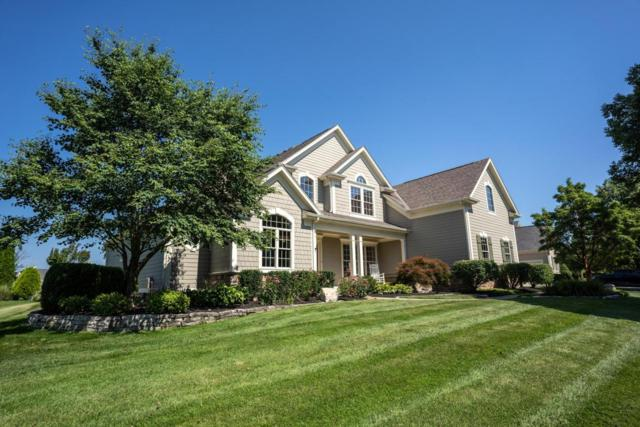6556 Ballantrae Place, Dublin, OH 43016 (MLS #218028792) :: Berkshire Hathaway HomeServices Crager Tobin Real Estate