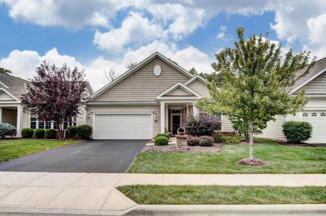 5466 Welbourne Place, New Albany, OH 43054 (MLS #218029103) :: The Columbus Home Team