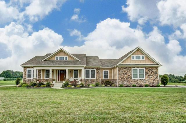288 Marsh Hawk Place, Canal Winchester, OH 43110 (MLS #218029188) :: Susanne Casey & Associates