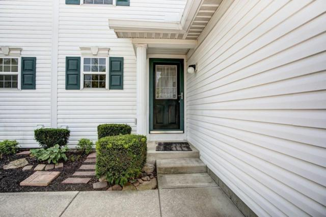 6673 Hamler Drive 41D, Canal Winchester, OH 43110 (MLS #218029671) :: Julie & Company