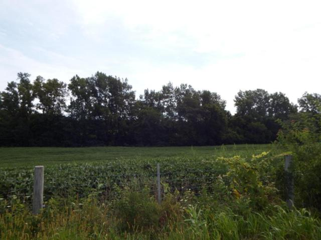 0 State Route 104 Lot 2, Ashville, OH 43103 (MLS #218029676) :: The Mike Laemmle Team Realty