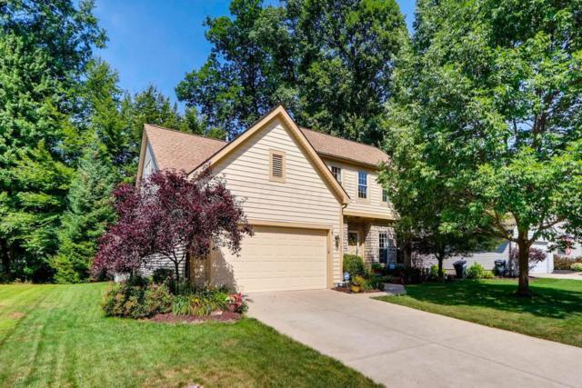 1105 Bergenia Drive, Reynoldsburg, OH 43068 (MLS #218029701) :: Berkshire Hathaway HomeServices Crager Tobin Real Estate