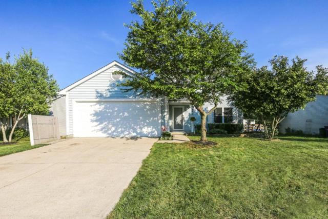 1648 Ringfield Drive, Galloway, OH 43119 (MLS #218029804) :: Shannon Grimm & Partners