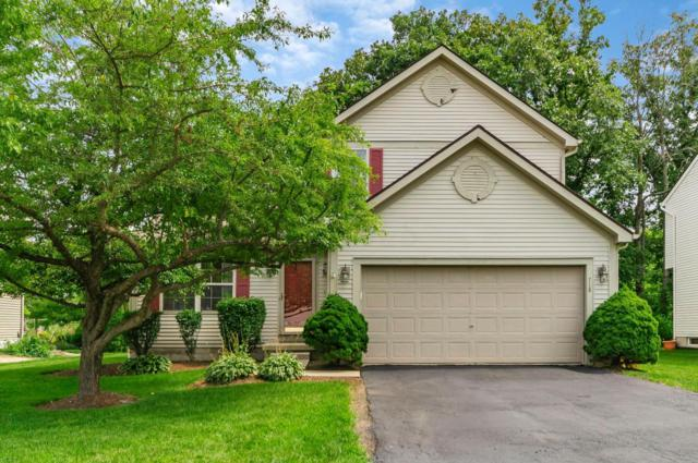 718 Infantry Drive, Galloway, OH 43119 (MLS #218029849) :: Susanne Casey & Associates