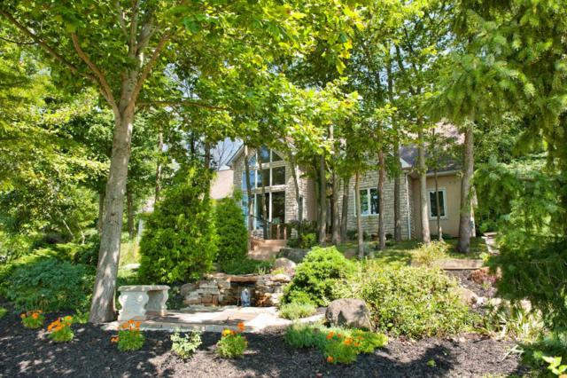 15446 Ringgold Northern Road, Ashville, OH 43103 (MLS #218029910) :: The Mike Laemmle Team Realty