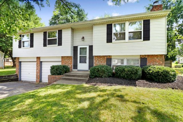 6502 Bunting Court, Westerville, OH 43081 (MLS #218029956) :: Berkshire Hathaway HomeServices Crager Tobin Real Estate