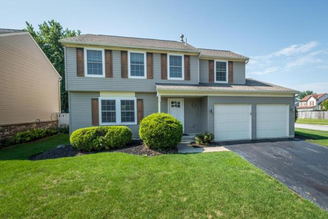 965 Cherry Bud Drive, Columbus, OH 43228 (MLS #218030496) :: The Mike Laemmle Team Realty
