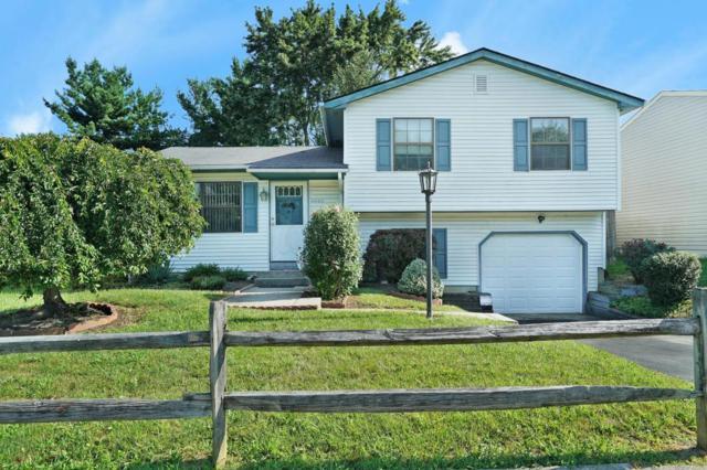 6840 Centennial Drive, Reynoldsburg, OH 43068 (MLS #218030560) :: Susanne Casey & Associates